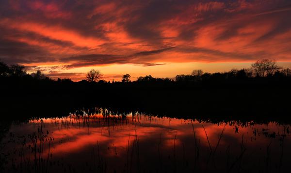 kp0329_Laguna_pond