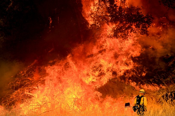 A Windsor firefighter faces down backfire off Morgan Valley Road on the Rocky fire near Lower Lake on  Thursday, July 30, 2015. (KENT PORTER/ PD)