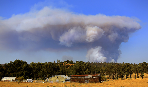 The Rocky Fire from Butts Canyon Road in Lake County, Wednesday July 29, 2015. (Kent Porter / Press Democrat) 2015