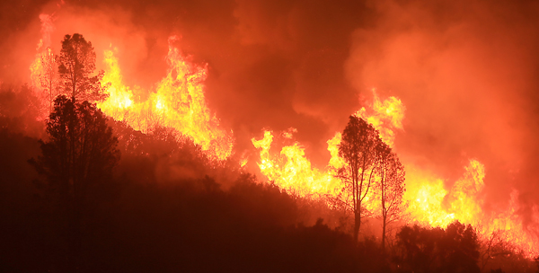Fire romps through tinder dry brush on the Rocky fire in Lake County  on July 29, 2015.  (Kent Porter / Press Democrat) 2015