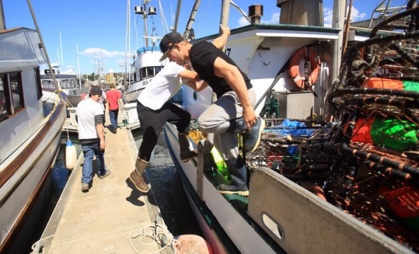Deckhands all around Spud Point Marina in Bodega Bay, busied vessels for the beginning of Dungeness crab season, Tuesday March 29, 2016. (Kent Porter/Press Democrat) 2015