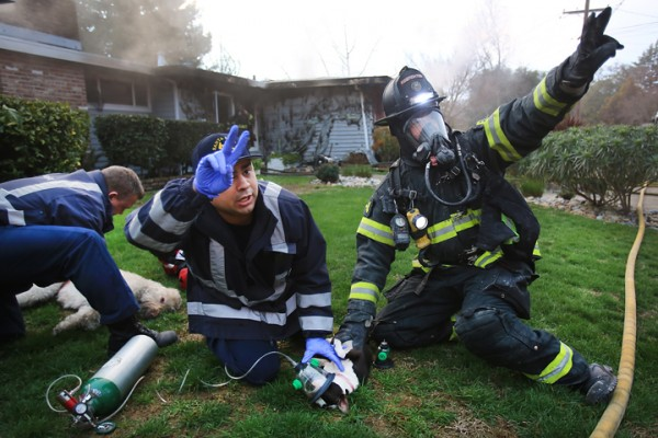 Santa Rosa firefighters, Teddy Day, middle, and Mike Johnson call for more oxygen as they attempt to resuscitate a family pet that was rescued from a house fire on East Foothill Drive in Santa Rosa. At left, firefighter Mike Nealon attempts the same. Both animals died despite the firefighters efforts. (Kent Porter / Press Democrat) 2016