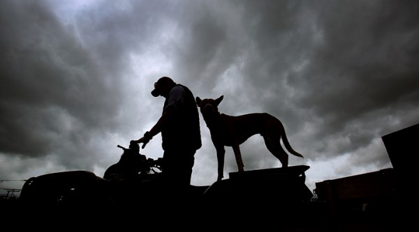 Threatening skies doesn't deter Brian Denner and his dog Kody, as they prepare to help Sonoma County Sherif's deputies stamp ID numbers on farm equipment at the Denner Ranch in Santa Rosa, Wednesday Feb. 17, 2016. (Kent Porter / Press Democrat) 2016
