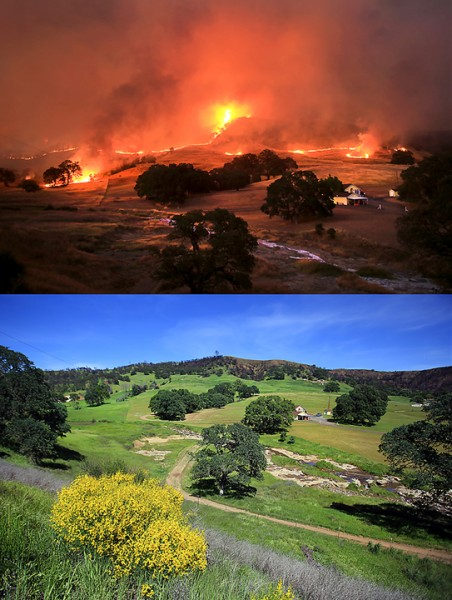 Off Morgan Valley Road in Lower Lake, the first night of the Rocky fire threatened several homes in July 2015.  The same view in April 2016.  (Kent Porter / Press Democrat) 2016